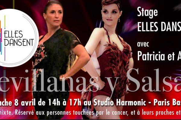 stage-sevilanas-y-salsa-elles-dansent